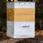 Уход за пчелами в двухкорпусных ульях