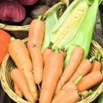 Сбор и хранение овощей