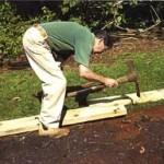 Садово-огородные работы в сентябре