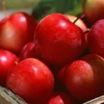 Как сохранить яблоки свежими всю зиму?