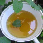 Мятный мед: польза и только польза