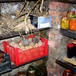 Хранение овощей в погребе зимой