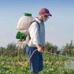 Использование пестицидов на дачном участке