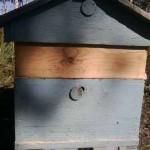 Уход за пчелами в 12- рамочном улье с надставками