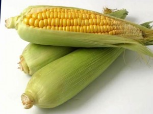 hranenie_kukuruzi