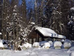 Финский и Норвежский методы зимовки пчел