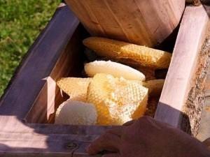 Прессование - старинный метод получения мёда