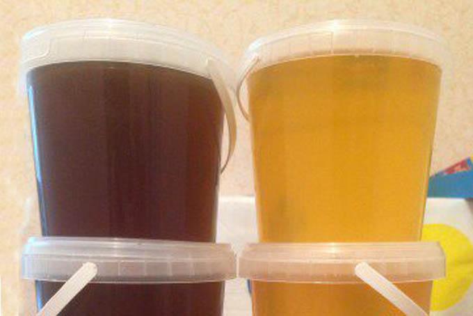 Какой мед лучше, цветочный или гречишный